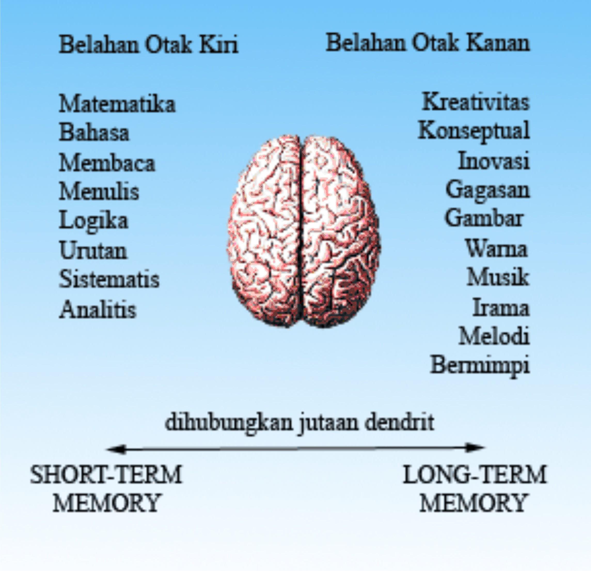 Tips Menggali Potensi Otak Kita | Akimlinovsisa's W.P